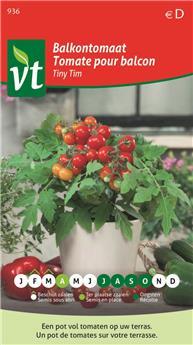 Tomate balcon Tiny Tim (VT)