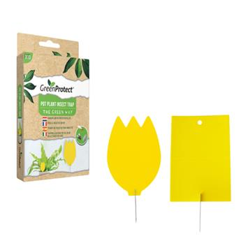 Green Protect piege insecte en pot