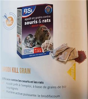 Rat et Souris appât Grains BSI