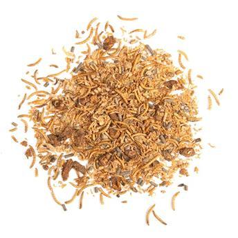 Insectes séchés en mélange 250 g