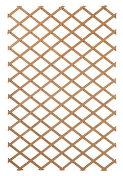 Treillis extensible 100 x 300 cm bois FSC vert