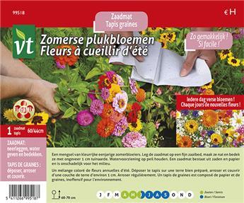 VT tapis de graines fleurs a ceuillir d ete